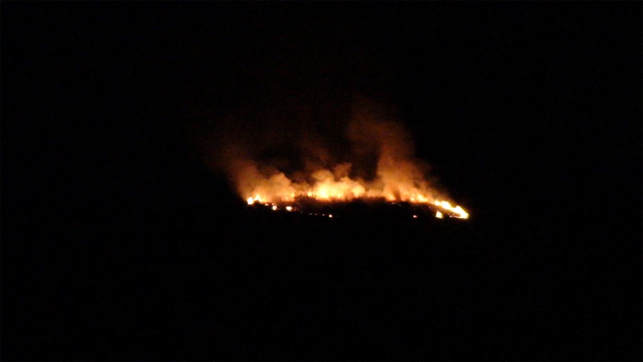 20121211-foc_29-08-12_b.jpg